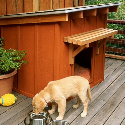 Building your own dog house